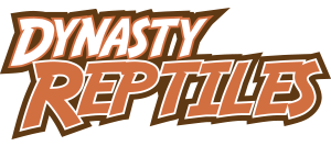 Dynasty Reptile